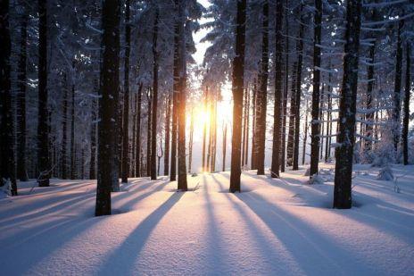 winter-solstice-facts-jpg-653x0_q80_crop-smart